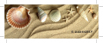 120x40_pocket-cleaner_shells